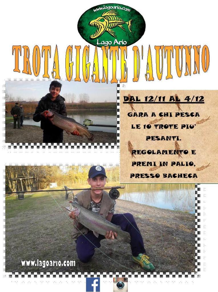 TROTA GIGANTE D'AUTUNNO