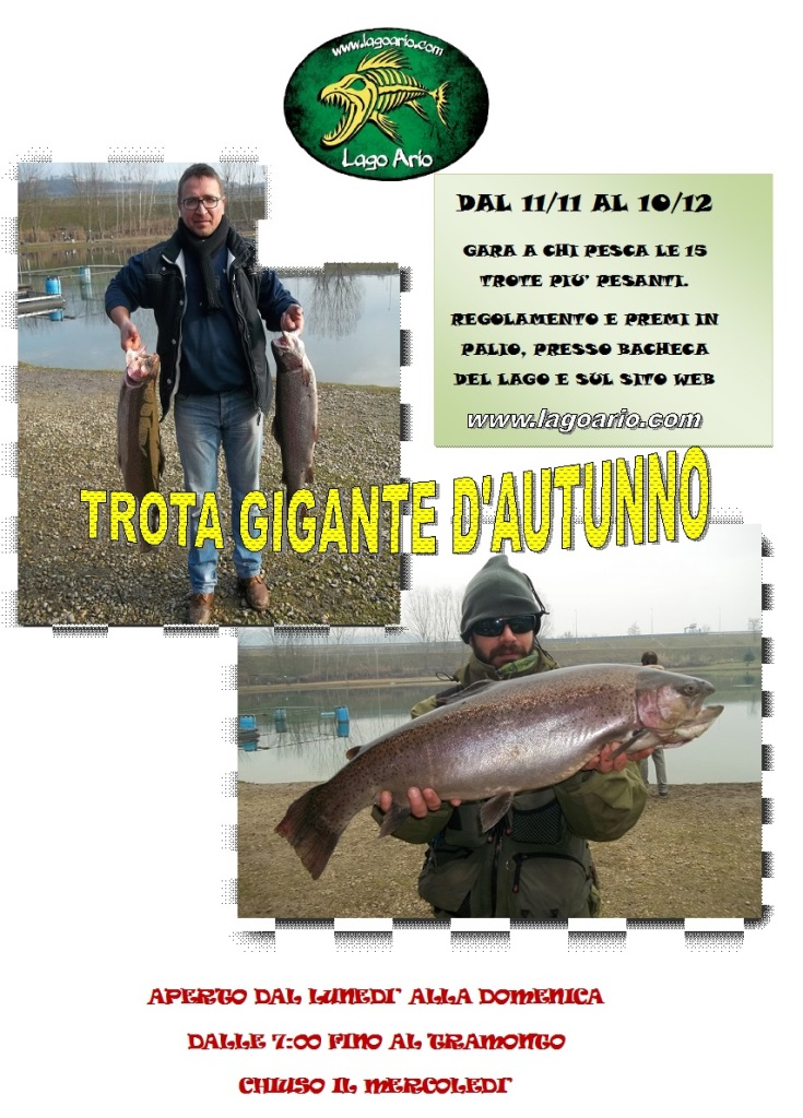 TROTA GIGANTE D&#03...