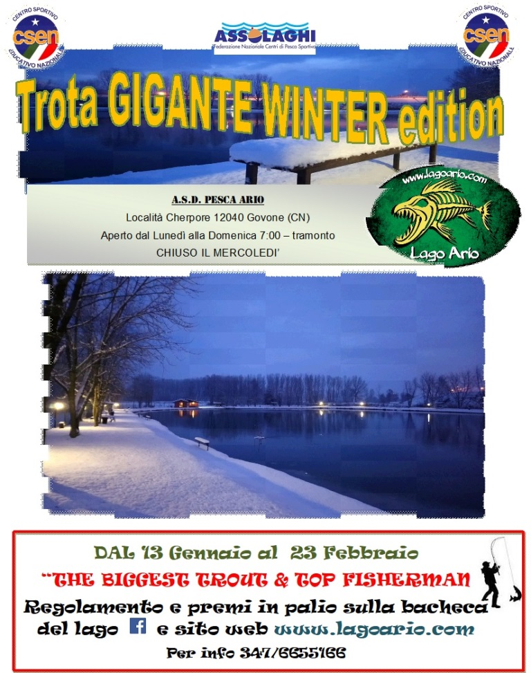 TROTA GIGANTE WINTER EDITION