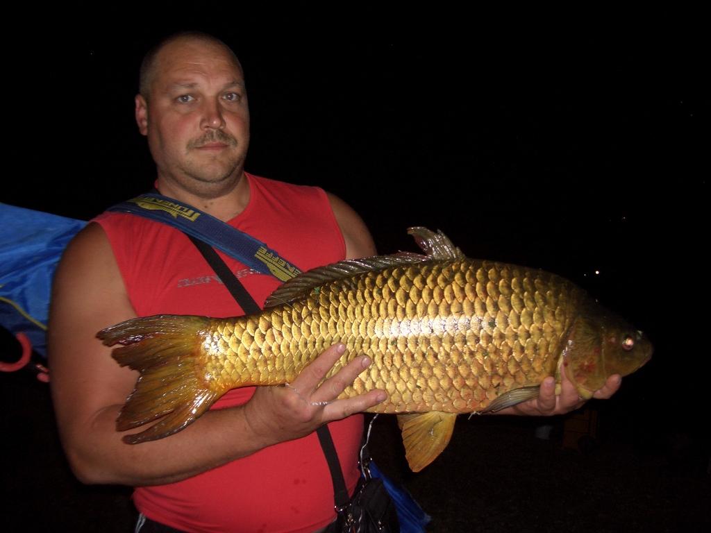FLORIN con Carpa Regina di kg 7,440