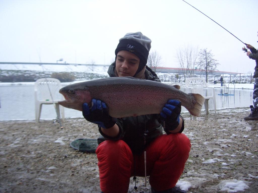 OMAR con Iridea kg 4,000