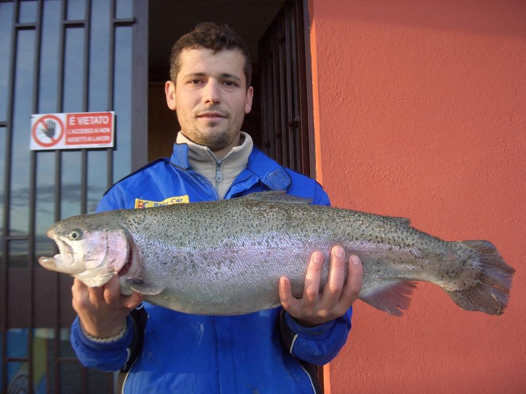 HYSEN kg 4,500