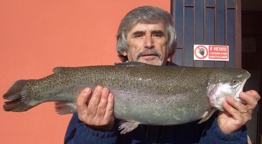 REMO con Iridea kg 4,150