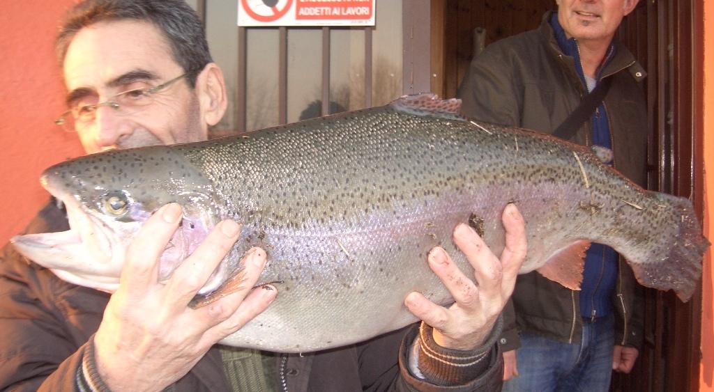 VALTER  kg 5,700