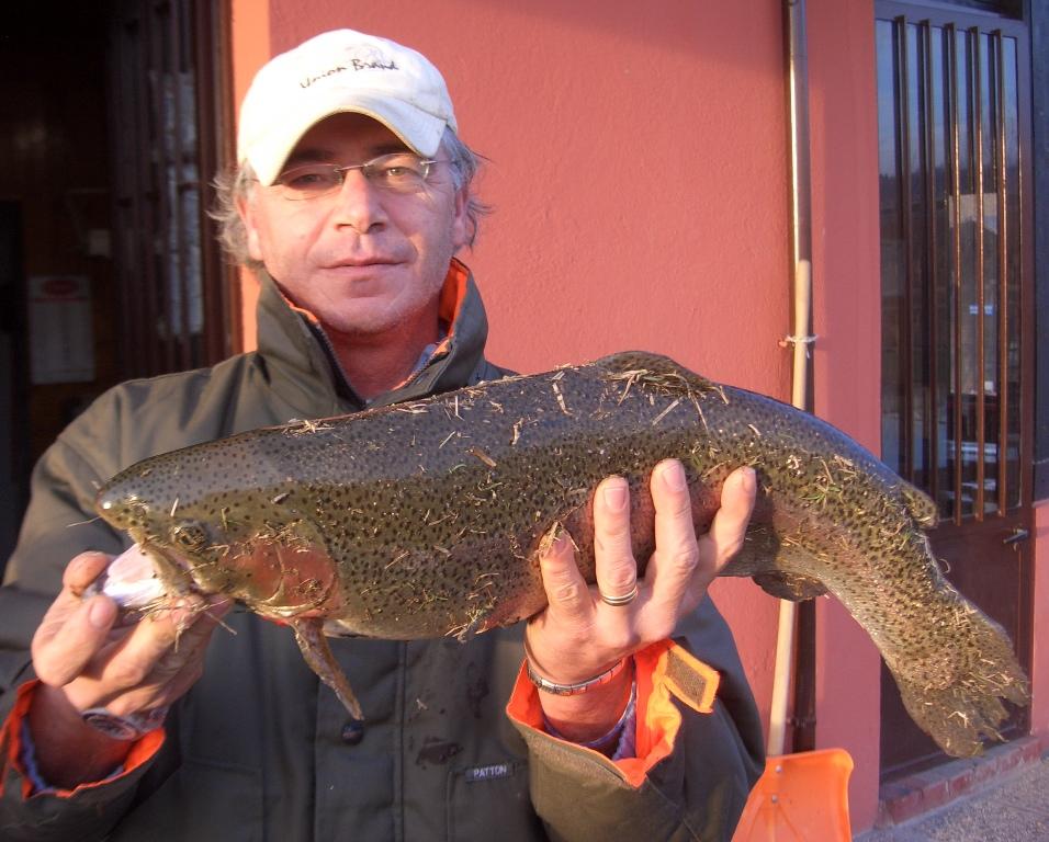 FERRUCCIO con iridea kg 3,340